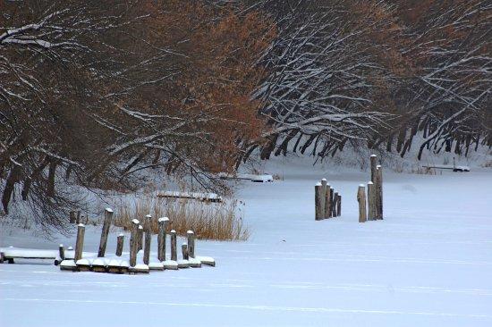Iasi County, Ρουμανία: Venetia Lake