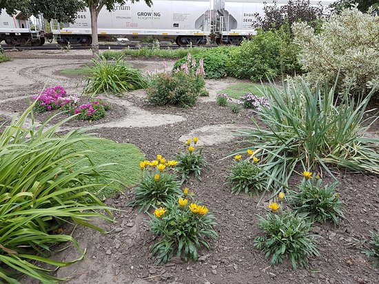 Rosthern, Canada: Splendid walk through garden adds to your lunch at the tearoom.