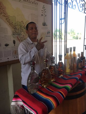 Free Tequila Tour By Casa Mission: Tequila tasting tour