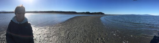 Madrona Beach Resort: photo1.jpg