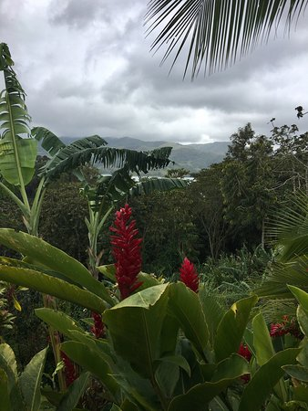 Nuevo Arenal, Costa Rica: photo2.jpg