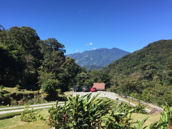 Habla Ya, cours d'espagnol et écotourisme : Boquete tree trek