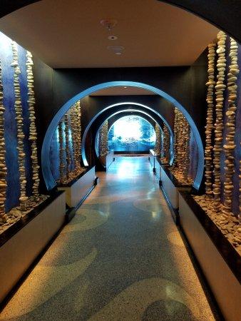 One Ocean Resort & Spa Image