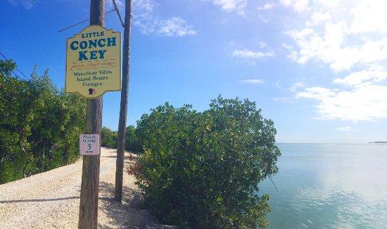 Conch Key, FL: photo4.jpg