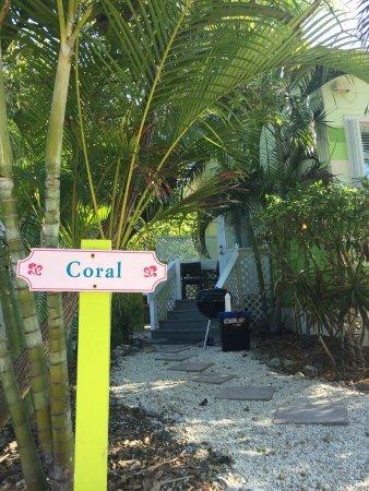Conch Key, FL: photo6.jpg
