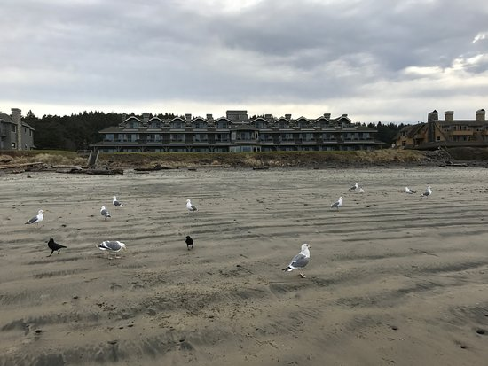 Stephanie Inn: View of the inn from the beach at low tide.