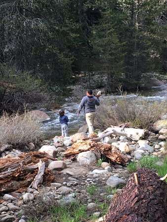 Three Rivers, CA: Buddy and I like to throw rocks.