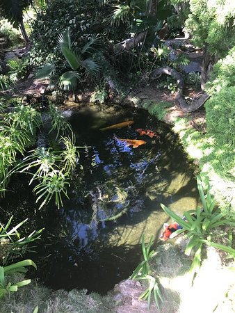 Self Realization Fellowship Hermitage & Meditation Gardens : photo2.jpg