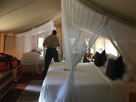 Sarova Mara Game Camp Foto