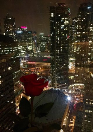 Toula restaurant bar picture of toula restaurant for 1 harbour square 38th floor toronto on m5j 1a6
