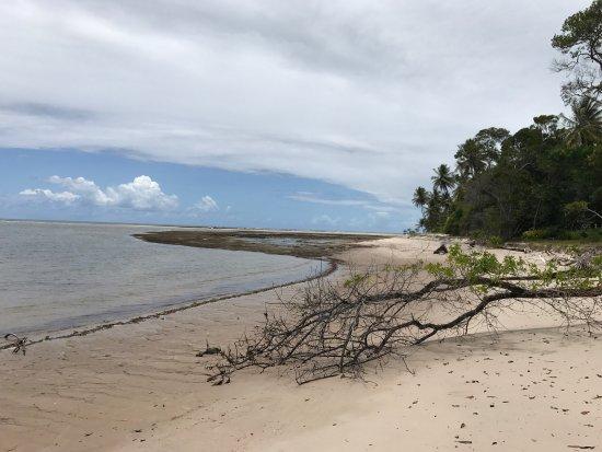 Ilha de Boipeba, BA: photo6.jpg
