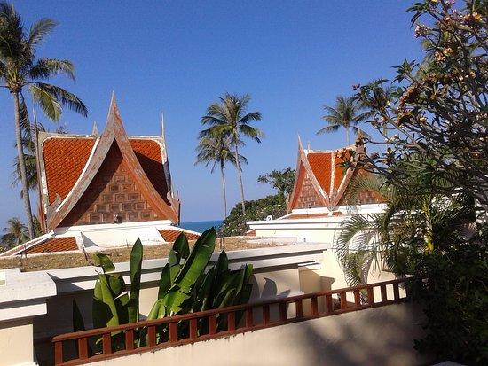 Q Signature Samui Beach Resort : Сад на территории виллы.