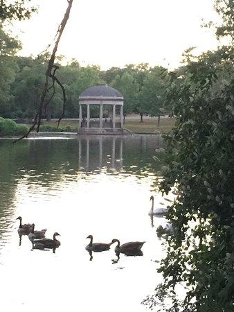 Slater Memorial Park: photo0.jpg