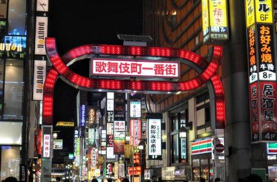 Nocturnal Walking Tour of Shinjuku