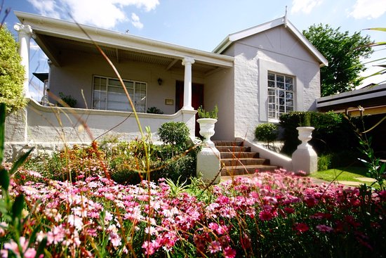 Melville Manor Guest House: Flowers in bloom