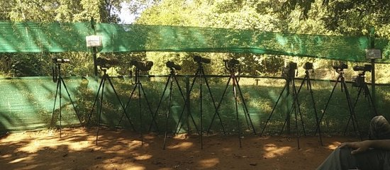 Ganeshgudi, Inde : Cameras at the hide