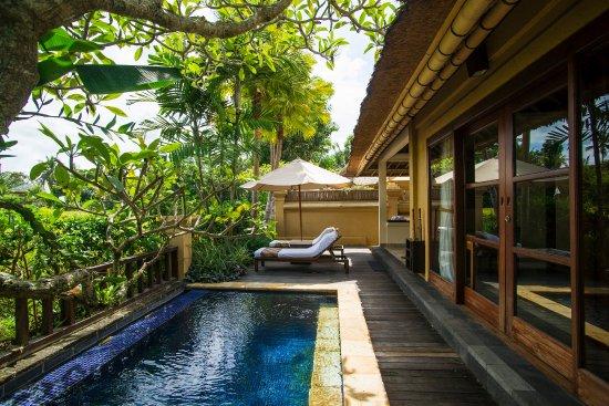 Komaneka at Monkey Forest: Pool Villa