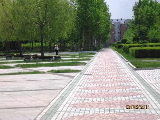 Daqing, China: Green! Green! Spring is here! But not a lot of people.