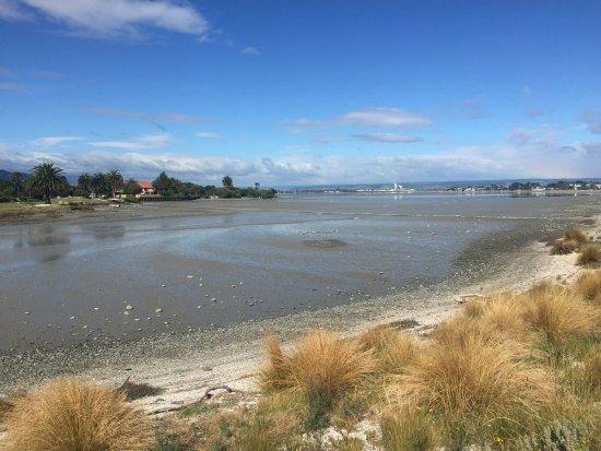 Mapua, New Zealand: photo2.jpg