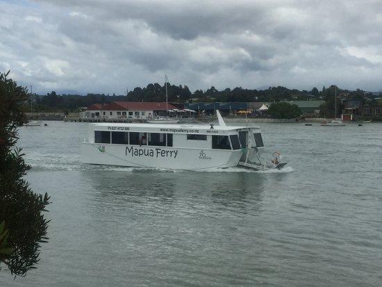 Mapua, New Zealand: photo3.jpg