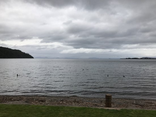 Turangi, نيوزيلندا: photo1.jpg