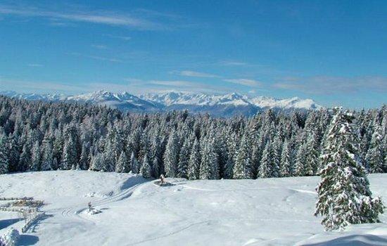 Meltina (Moelten), Italien: Winterlandschaft