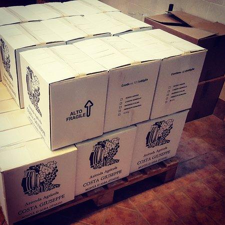 Monta, Italia: Scatole da 12 Bottiglie di vino dei nostri magazzini