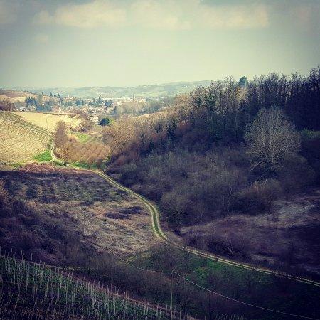 Monta, Italia: Una splendida immagine delle Langhe