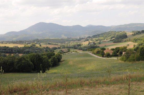 Umbertide, Italy: Una passeggiata - visuale dell'agriturismo dalla campagna circostante