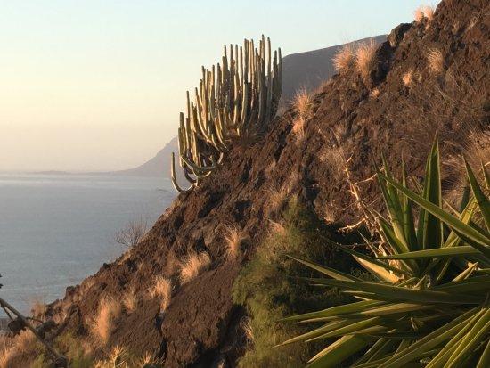 Santiago del Teide, Espanha: photo0.jpg