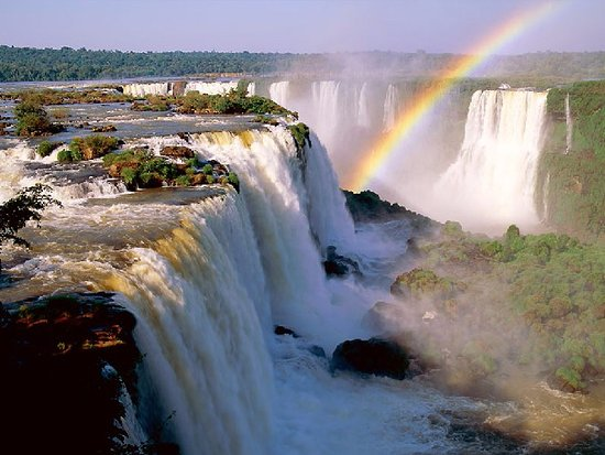 Ambiental Iguassu Travel