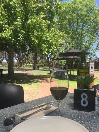 Middle Swan, Australia: Enjoying a glass of wine under the vine