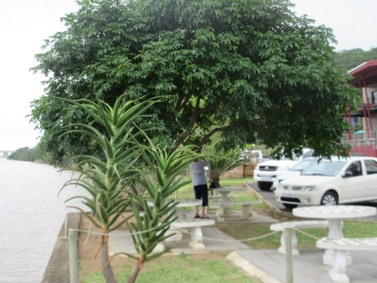 Port Shepstone, South Africa: The parking area and river side tables
