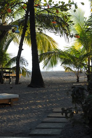 Fenix Hotel - On The Beach: The view from the hotel patio.