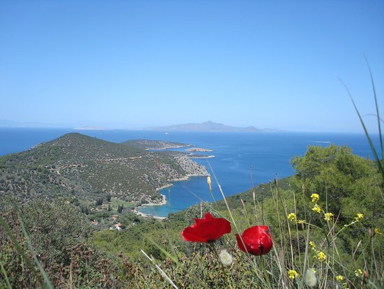 Saronic Gulf Islands, Yunani: Isla de Poros