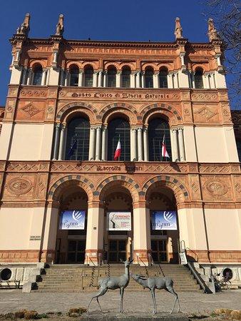 Civico Museo di Storia Naturale : photo0.jpg