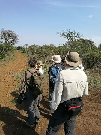 Bayala Game Lodge: Bush walk