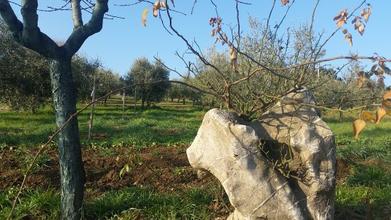 Marsciano, Italien: Antico Casolare