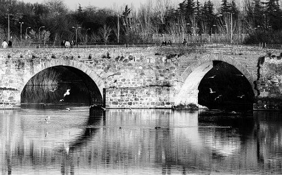 Talavera de la Reina, Spanien: Puente romano de Talavera.