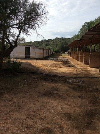Mexilhoeira Grande ภาพถ่าย