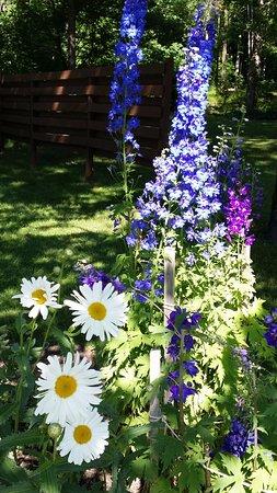 Boyne City, MI: Summer garden at Elvyn Lea
