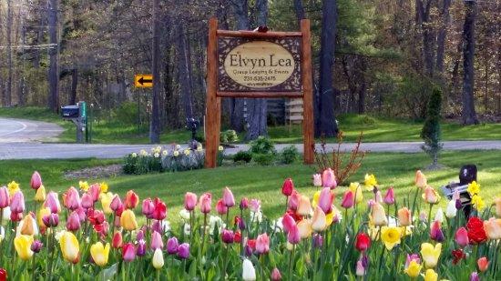 Boyne City, MI: Elvyn Lea in spring.