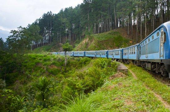 Demodara Loop: Поезд