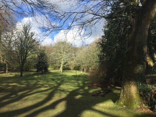 Pinetum Park and Pine Lodge Gardens: photo0.jpg