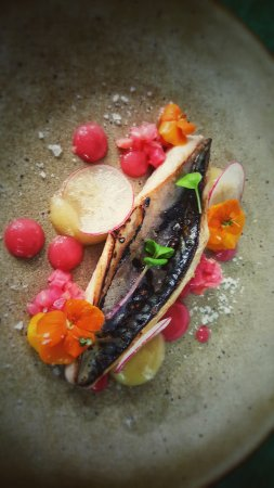 Llangattock, UK: Mackerel, apple, rhubarb
