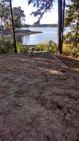 Appling, GA: View of campsite