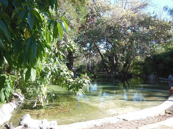 National Gardens : Il laghetto
