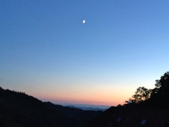 Harkhofs Vesperstube Toller Nachtblick Richtung Rhein