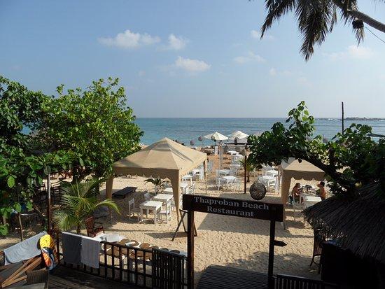 Thaproban Beach House: Utsikt från balkongen.