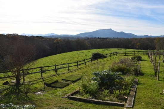 Ahetze, France: The glorious December view